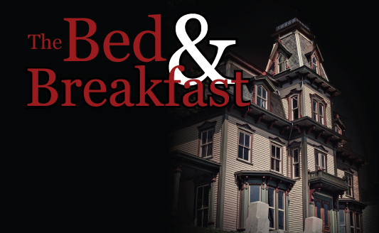 Newly released The Bed & Breakfast, a novel